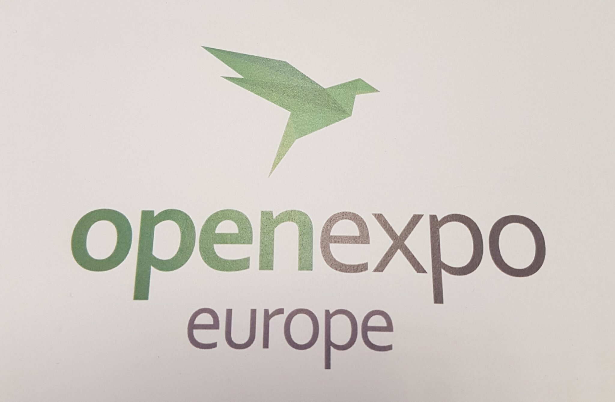 open expo scaled - IMERIR