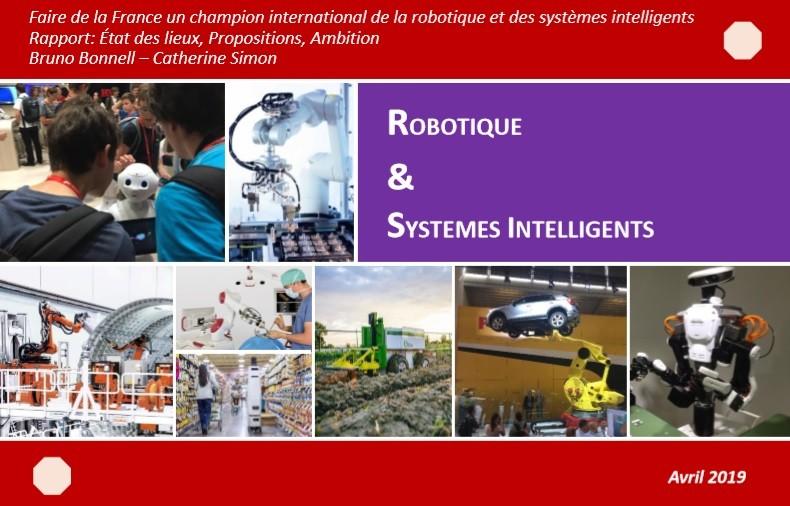 rapportbonnell simon - IMERIR